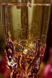 Love  wedding rings glass of champagne Royalty Free Stock Photography