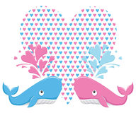 Love whale Royalty Free Stock Photos