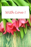 With love wishes and bouquet of gorgeous red tulips Stock Image