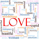 Love Word Cloud Concept. An illustration around the word Love with lots of different terms such as sweetheart, happiness, wedding, adult, sexy, engagement, kiss Royalty Free Stock Image