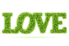 Love word in green leaves stock illustration