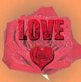 Love. The word Love with a heart and a Rose Royalty Free Stock Photo