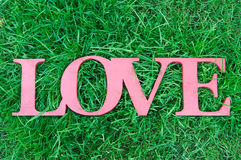 Love word in retro style on green grass background. Concept Stock Image