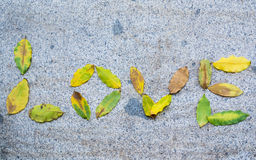 Love word. Written with autumn leaves stock photography