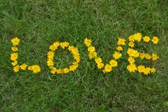Love written with Flowers Royalty Free Stock Images