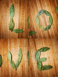 Love written with leaves Stock Photography