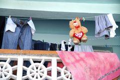 Love you. A bear loves someone while hanging on the rack with the laundry Stock Image