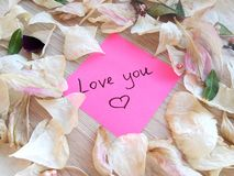 Love you message on pink sticky note with dry rose and orchid flower petals on wooden table background royalty free stock images