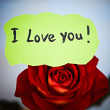 Love you message Royalty Free Stock Photography