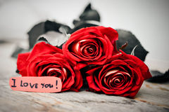 Love you message. Rose bouquet and love you message Stock Images