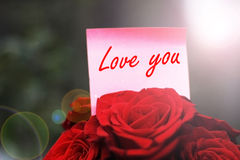Love you. Text and beautiful red roses Stock Photography