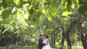 In love a young wedding couple is walking in the park. A husband with his wife in white bride wears a walk in nature. 1 stock footage