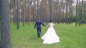 In love a young wedding couple is walking in the park. A husband with his wife in white bride wears a walk in nature stock video