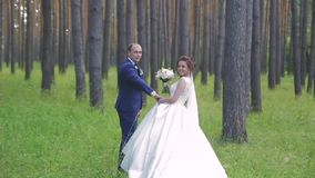 In love a young wedding couple is walking in the park. A husband with his wife in white bride wears a walk in nature stock video footage