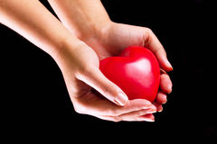 Love in your hands. Heart in hands as love and health symbol Royalty Free Stock Photos