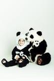 love3 panda obraz stock