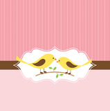 Lovebird Greeting Card. Vector illustration of a couple of lovebird on pink striped background Stock Photo