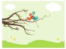 Lovebirds Immagini Stock Libere da Diritti