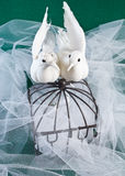 Lovebirds and Brass Cage with rings Stock Photos