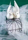 Lovebirds et cage en laiton avec des boucles Photos stock
