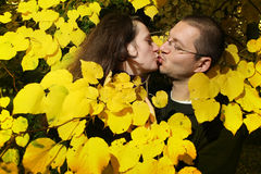 Lovebirds. Kissing in the branches of trees in autumn park Stock Image