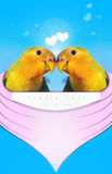 Lovebirds Love heart love you together Honeymoon Stock Photo