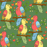 Lovebirds parrots pattern. Birds pattern with hearts on a green background. Birds pattern with hearts on a green background Royalty Free Stock Image