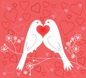 Lovebirds. Valentine's Day Stock Photos