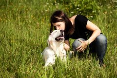 Loved dog Royalty Free Stock Photo
