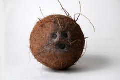 Loveley coconut face Royalty Free Stock Photos