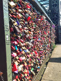 Lovelocks Royalty Free Stock Photos