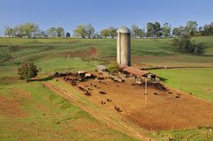 A lovely American idyllic pastoral scene of. Down on the farm in Gainger County, Tennessee, USA Royalty Free Stock Photos