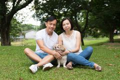 Asian lovely couple with shih tzu dog. Lovely asian couple with their pet shih tzu puppy at outdoor park royalty free stock image