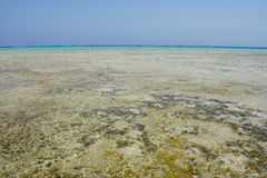 Lovely atoll Royalty Free Stock Photography