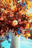 Lovely autumn flowers bunch in vase. Cozy home interior decoration. Fall still life stock photography
