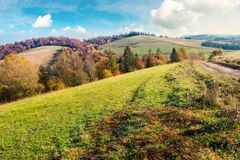Lovely autumn landscape in mountains. Forest with red foliage on the hill in the distance. wonderful weather on a sunny day royalty free stock image