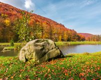 Lovely autumn scenery in park. Boulder on the shore of a lake. lovely autumn scenery in park. forested hills in fall colors stock photography