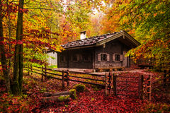 Lovely Autumn at the Sea of Kings Royalty Free Stock Photo