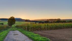Lovely Autumn Sunrise Royalty Free Stock Photo