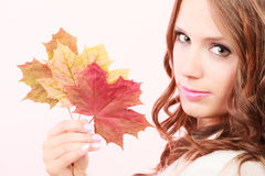 Lovely autumnal girl with maple leaves in hand Stock Photography