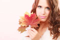 Lovely autumnal girl with maple leaves in hand Stock Images