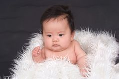 Lovely baby Royalty Free Stock Images