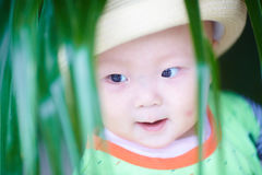 Lovely baby boy Royalty Free Stock Photos