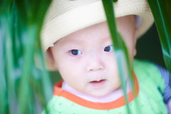 Lovely baby boy Royalty Free Stock Photo