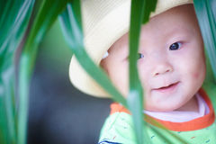Lovely baby boy Stock Photos