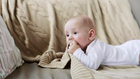 Lovely baby boy on sofa at home stock footage