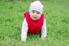 Lovely baby creeps on grass. Lovely baby in red waistcoat creeps on grass Stock Photography