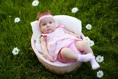 Lovely baby girl in the basket Royalty Free Stock Photos