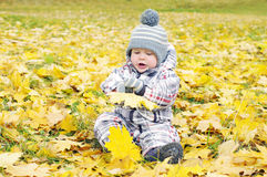 Lovely baby playing with yellow leaves Stock Photos