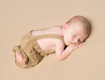 Lovely baby sleeping on his stomach Royalty Free Stock Images